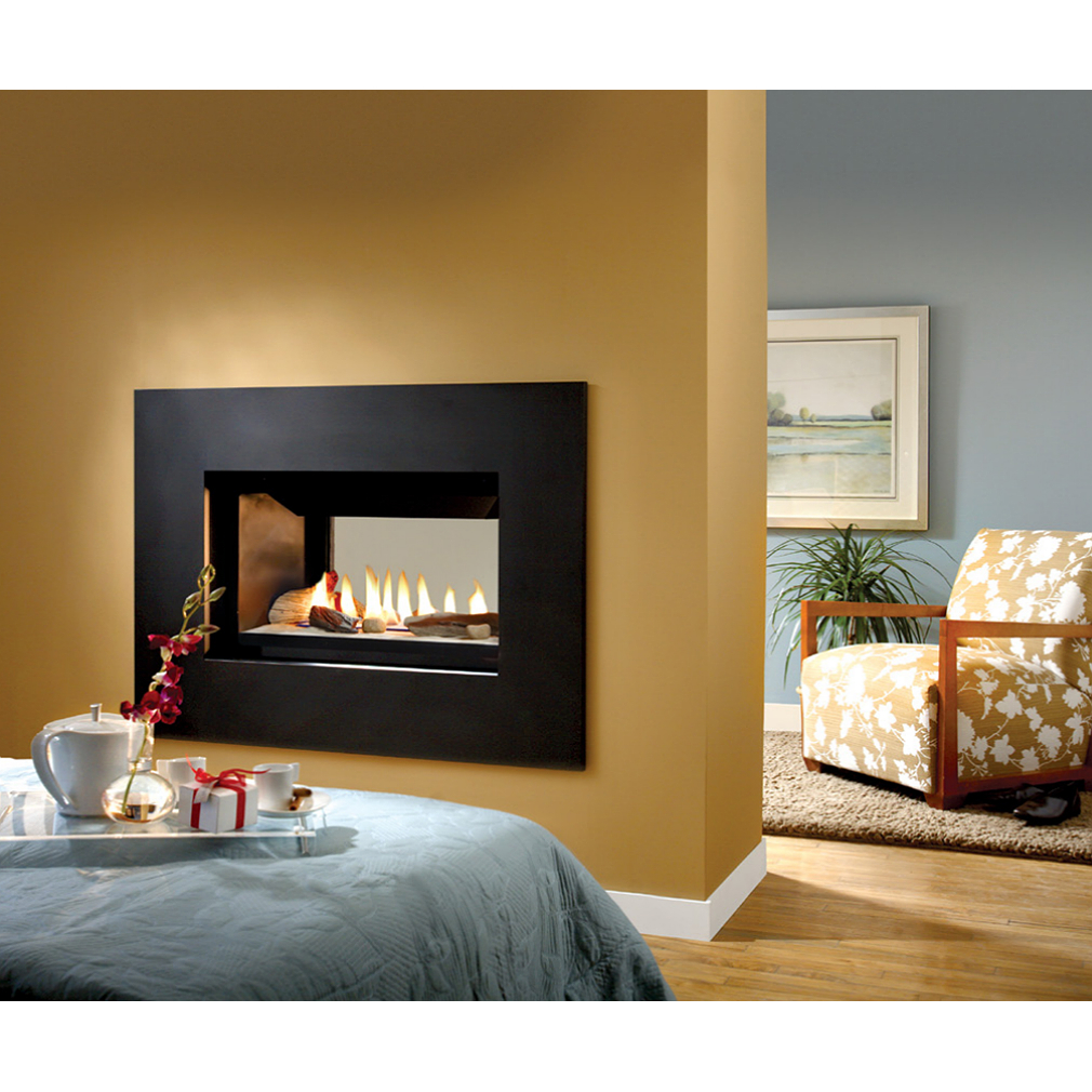 buy gas fireplaces online skyline see thru san francisco bay