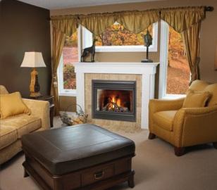 BD36DF Gas Fireplace