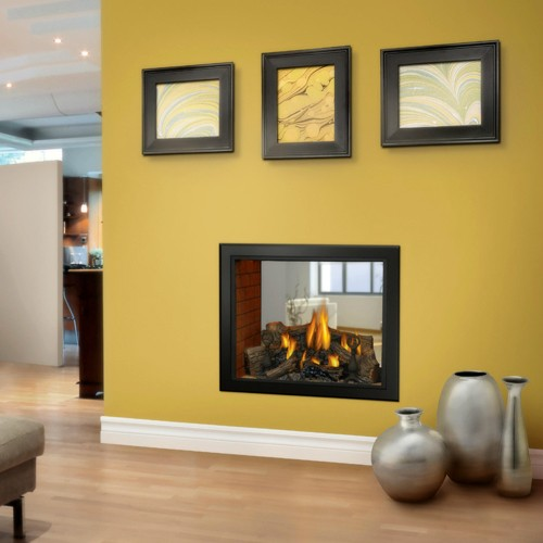 Buy Gas Fireplaces Online Hd81 See Thru San Francisco