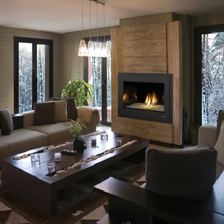 Buy Gas Fireplaces Online | 8000 Modern | San Francisco Bay Area ...