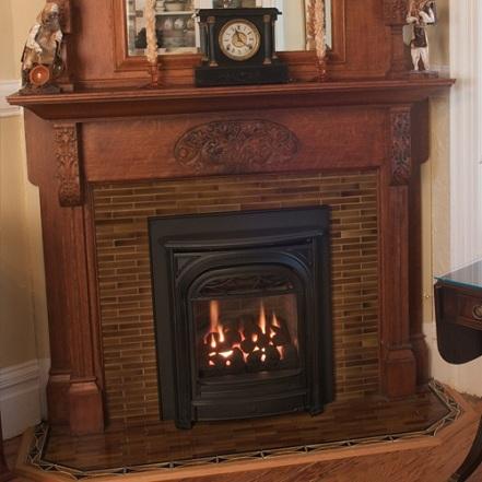 Buy Gas Fireplaces Online Portrait President San