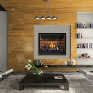 High Definition 46 Gas Fireplace