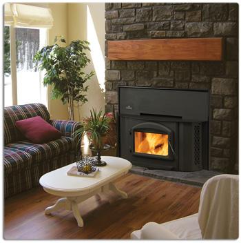 1402 Wood Burning Insert